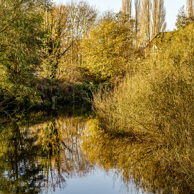 """Wensum Autumn"" stock image"