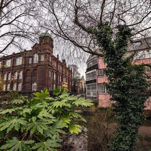 """""""Norwich Art School"""" stock image"""