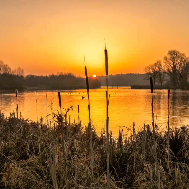 """New day Norfolk Broads"" stock image"