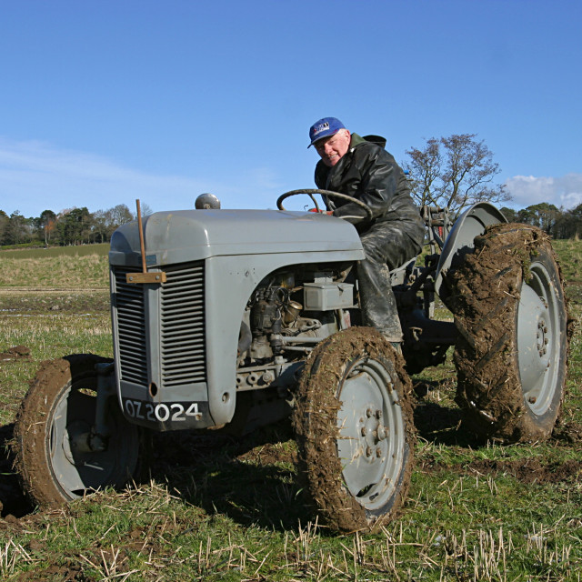 """Old Grey Massey Ferguson Tractor"" stock image"