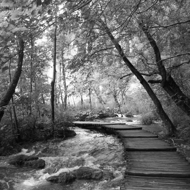 """Plitvice in Black and White"" stock image"