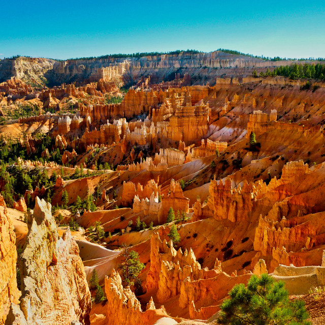 """Bryce Canyon"" stock image"