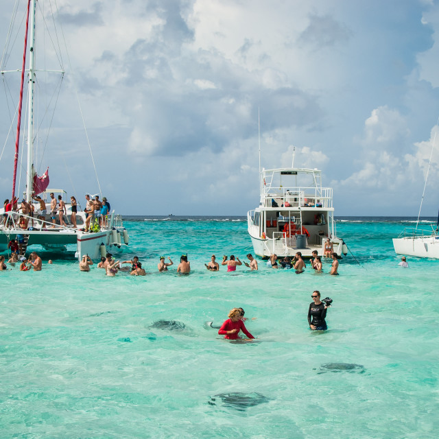 """""""Stingray city water party 2"""" stock image"""