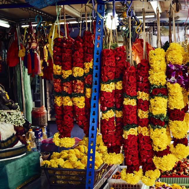 """Garlands on a stall in Little India, Singapore"" stock image"