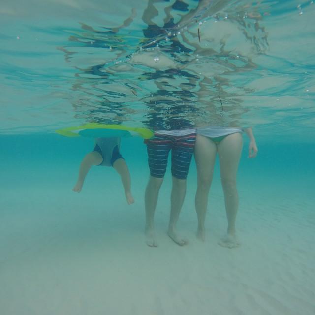 """""""Underwater Family 2"""" stock image"""