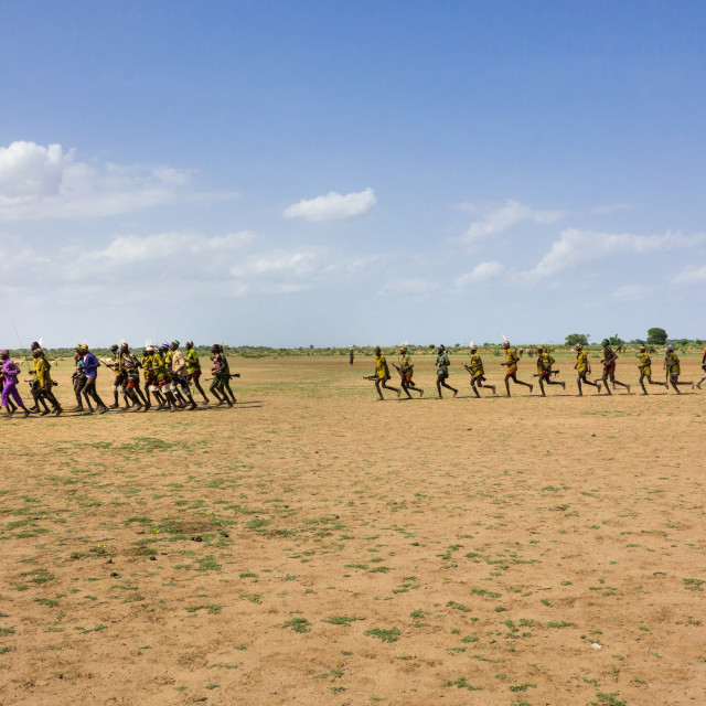 """Dassanech Proud Ox celebration, Salheng,Turkana County, Omorate, Ethiopia"" stock image"