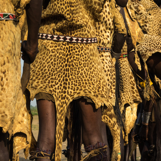 """Dassanech Dimi ceremony to celebrate circumcision of teenagers, Sies,Turkana..."" stock image"