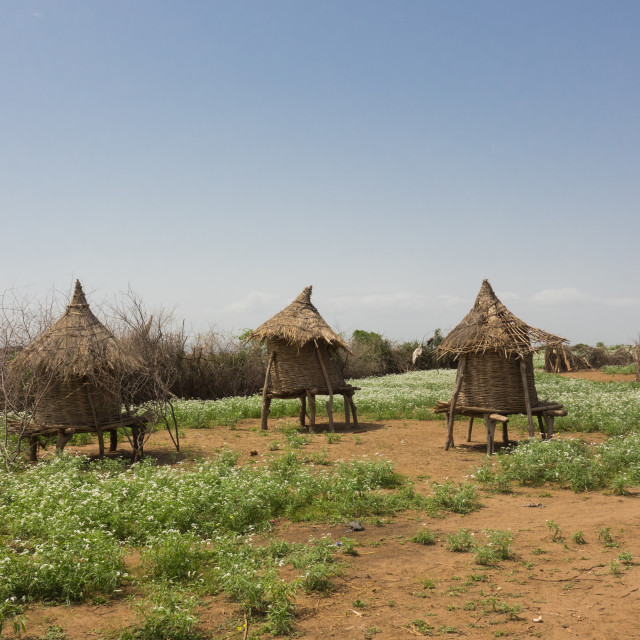 """""""Traditional Hut in a Kangate Village, Omo Valley, Ethiopia"""" stock image"""