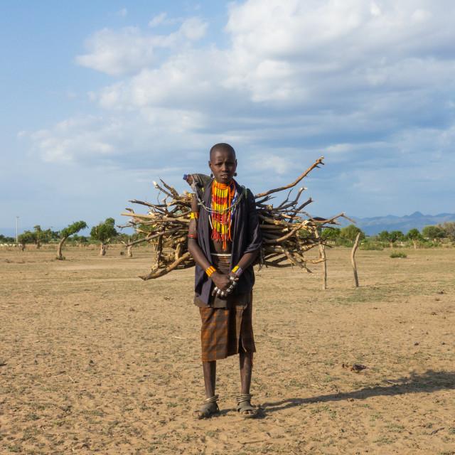 """Erbore tribe kid carrying wood in Murale village, Omo valley, Ethiopia"" stock image"