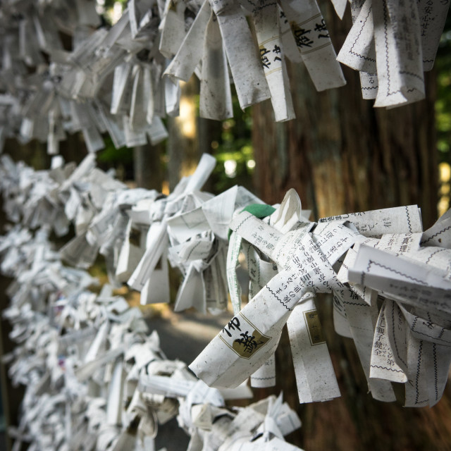 """Omikuji papers in which worshippers write prayers or wishes tied up in..."" stock image"