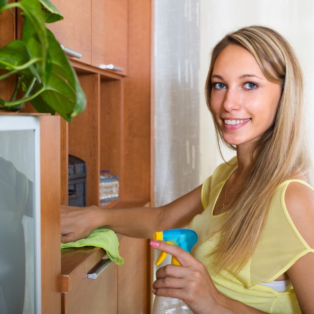 """""""woman dusting furniture with detergent polish"""" stock image"""