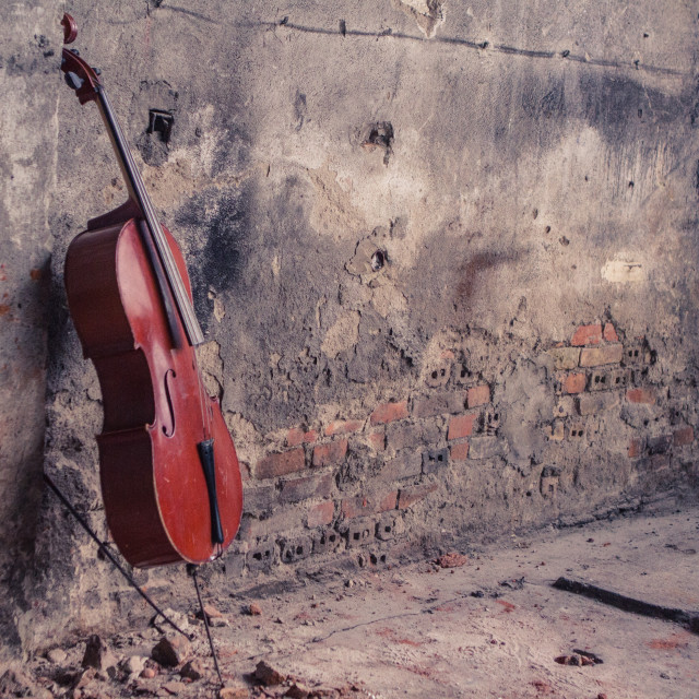 """""""Cello and Fire"""" stock image"""