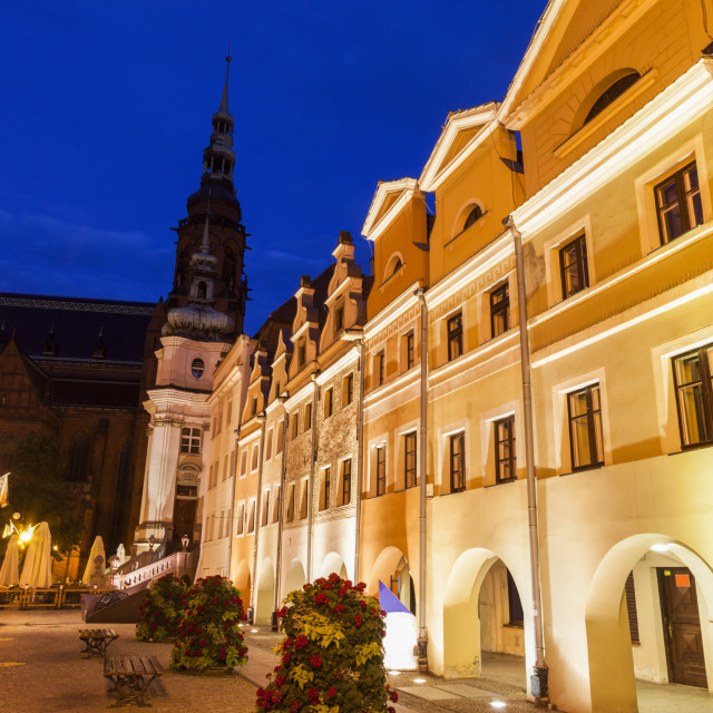 """""""Cathedral of Saints Peter and Paul in Legnica"""" stock image"""