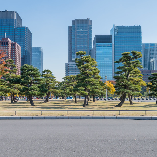 """Tokyo's sky scrapers from the Imperial Palace."" stock image"
