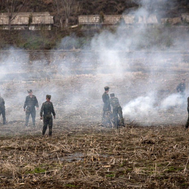 """""""Slash and burn farming with North Korean soldiers, Pyongan Province,..."""" stock image"""