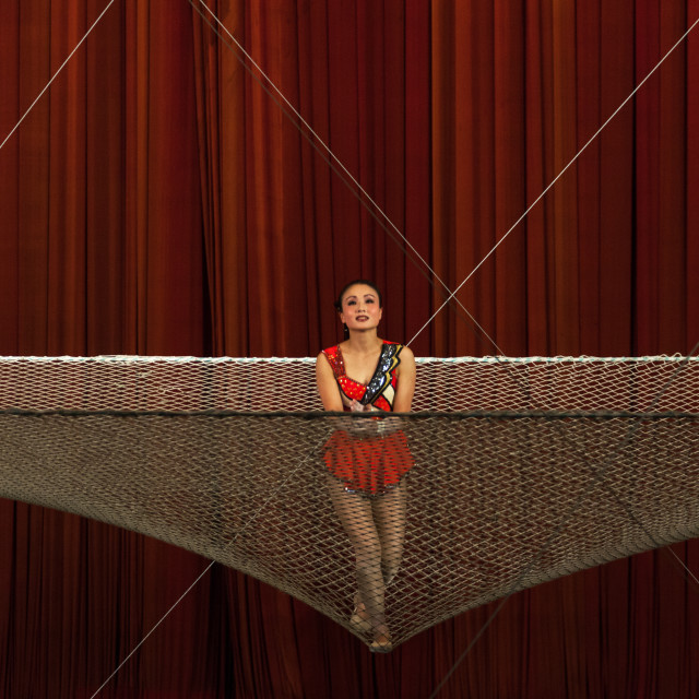 """North Korean woman acrobat on a safety net in a circus, Pyongan Province,..."" stock image"