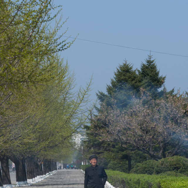 """North Korean man walking in a park, Kangwon Province, Wonsan, North Korea"" stock image"