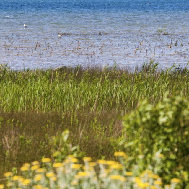 """Nottawasaga Island Lighthouse by Lake Huron"" stock image"