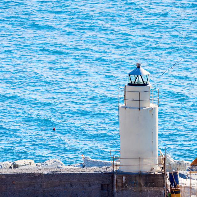 """Camogli Lighthouse"" stock image"