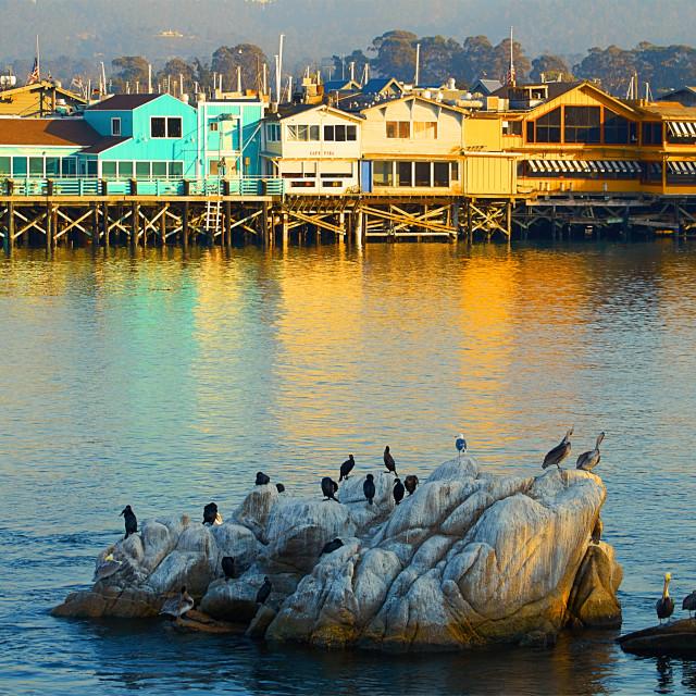 """""""Monterey pier"""" stock image"""