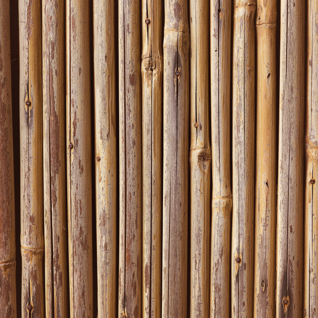 """""""Bamboo Wooden Fence Close Up"""" stock image"""