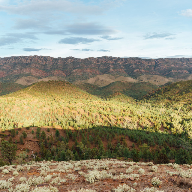 """outback australia"" stock image"