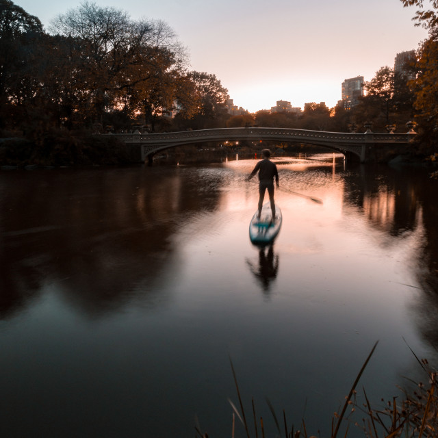 """paddle boarding in central park"" stock image"