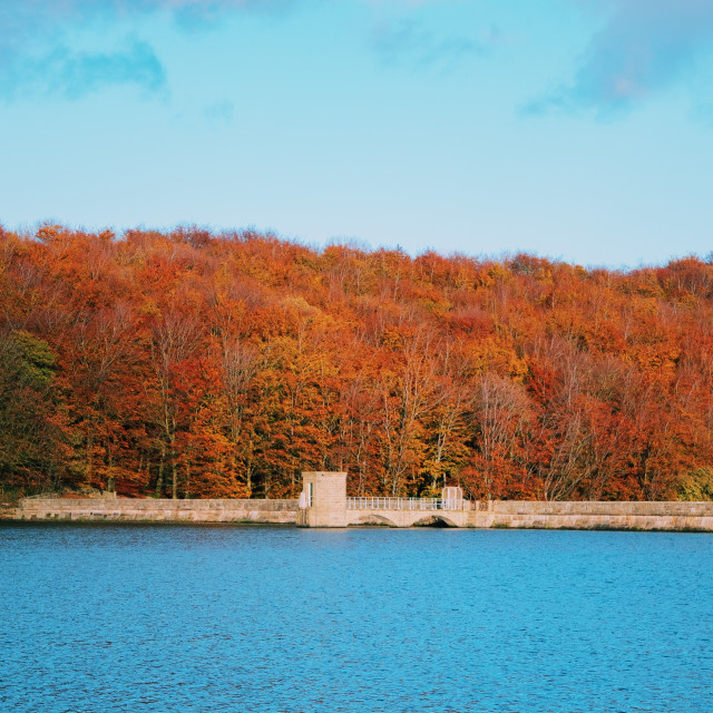 """""""Linacre reservoirs"""" stock image"""