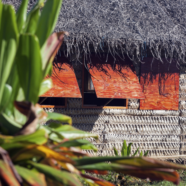 """""""Small house in Tonga"""" stock image"""