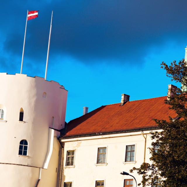"""""""Riga Castle"""" stock image"""