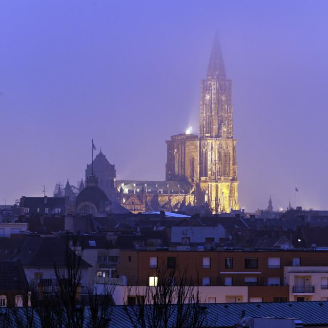 """Strasbourg Minster"" stock image"