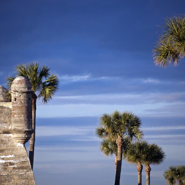 """Castillo de San Marcos"" stock image"