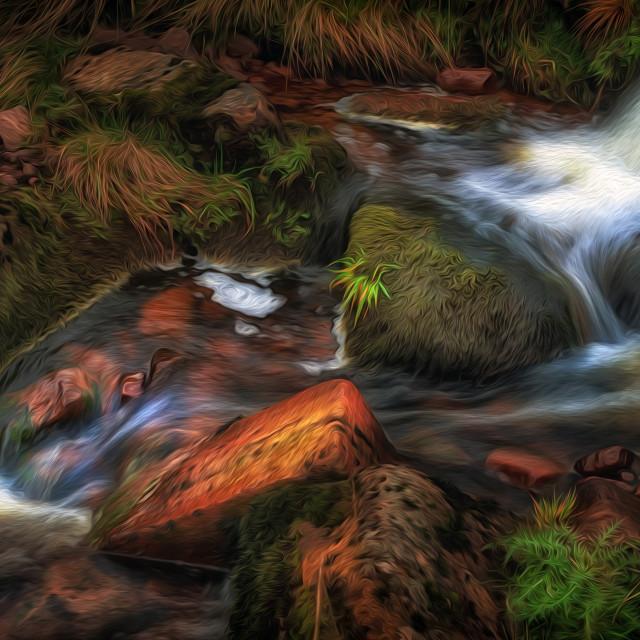 """Colours of Autumn in a Brecon stream"" stock image"
