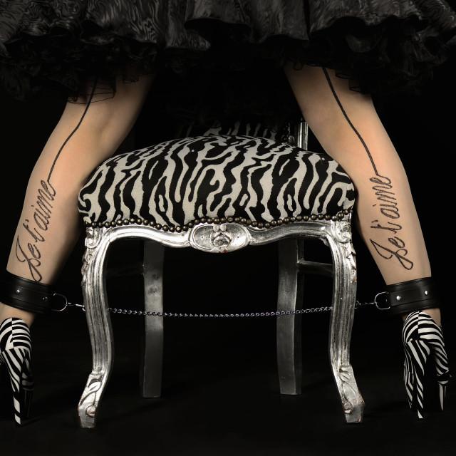 """""""Zebra High Heels"""" stock image"""