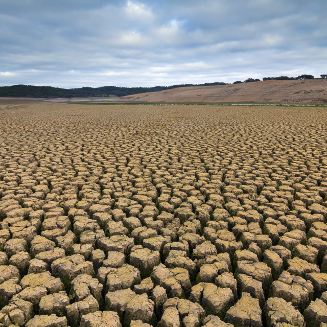 """Dry soil in a dam"" stock image"