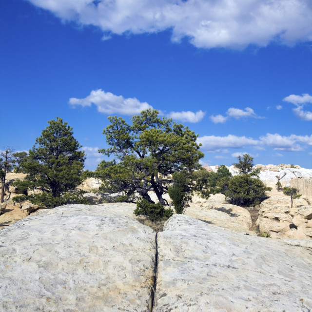 """Cheecks Rock in El Morro National Monument"" stock image"