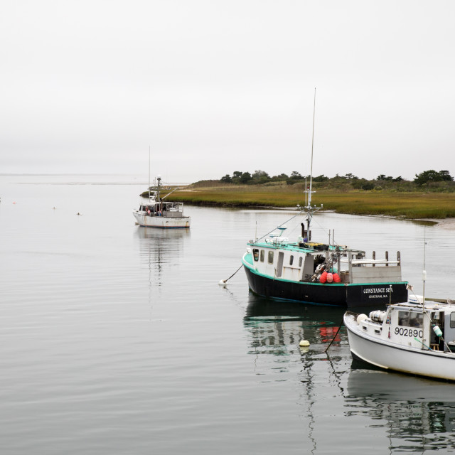 """""""Chatham Harbour"""" stock image"""