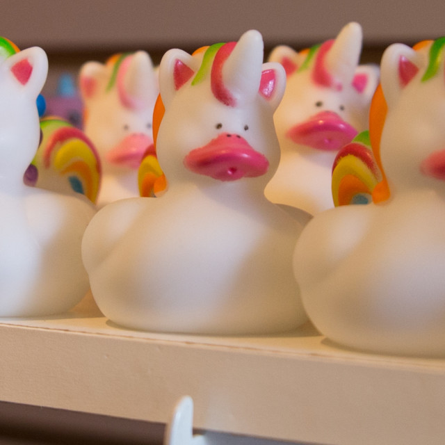 """""""Chatham Duck Shop"""" stock image"""