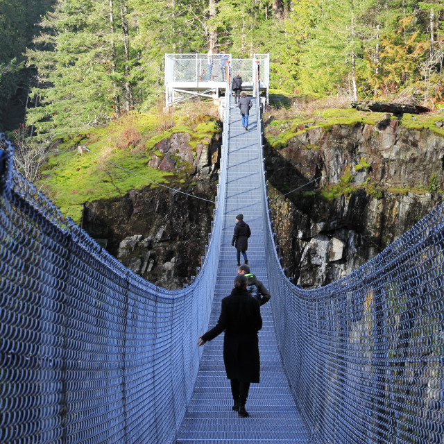 """Elk Falls suspension bridge (Canada)"" stock image"