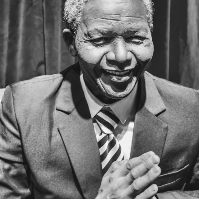 """""""Nelson Mandela"""" stock image"""