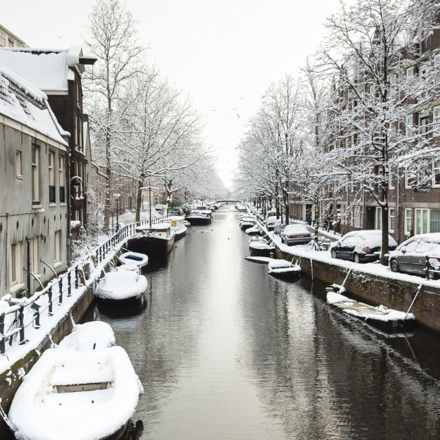 """""""Amsterdam in de winter, Amsterdam in winter"""" stock image"""