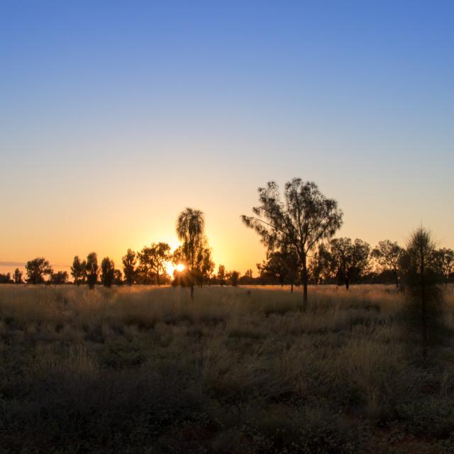 """""""Sunrise over the desert"""" stock image"""