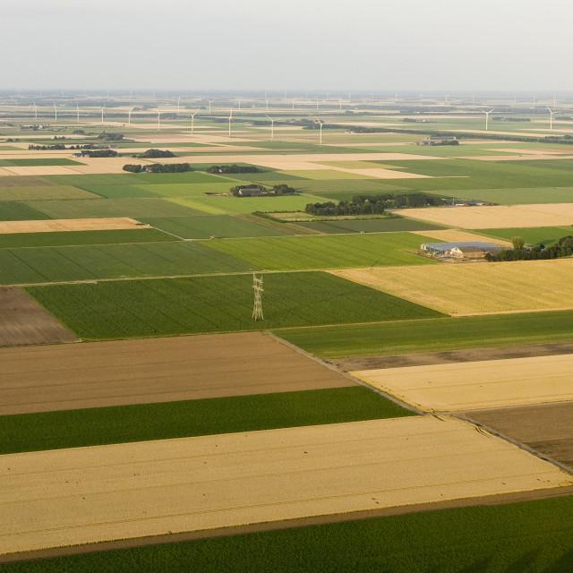 """""""Landschap van Noord-Holland; Landscape of Noord-Holland"""" stock image"""