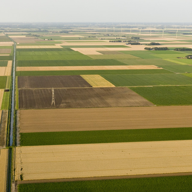 """Landschap van Noord-Holland; Landscape of Noord-Holland"" stock image"