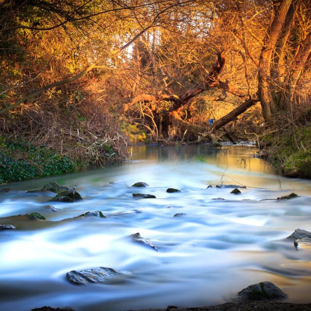 """Long river"" stock image"