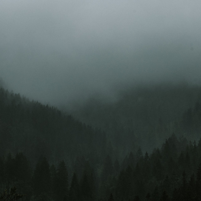 """""""Fog in mountains"""" stock image"""