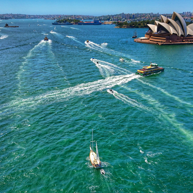 """Sailing By The Opera House"" stock image"