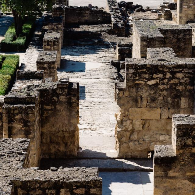 """View of archeological set of Madinat al-Zahra"" stock image"