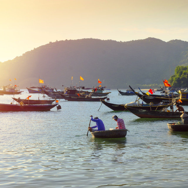 """""""Fishermen in traditional round basket coracle boats on Cham Island"""" stock image"""