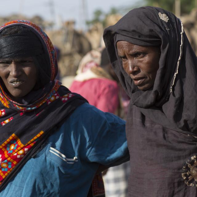 """Afar Tribe Women In Assayta Market, Ethiopia"" stock image"